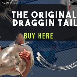 Draggin Tail Sinkers
